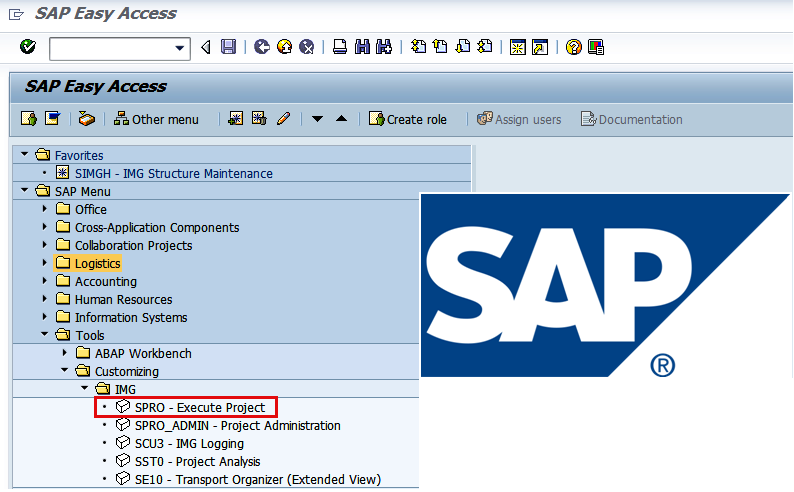 sap-img-customizing.png